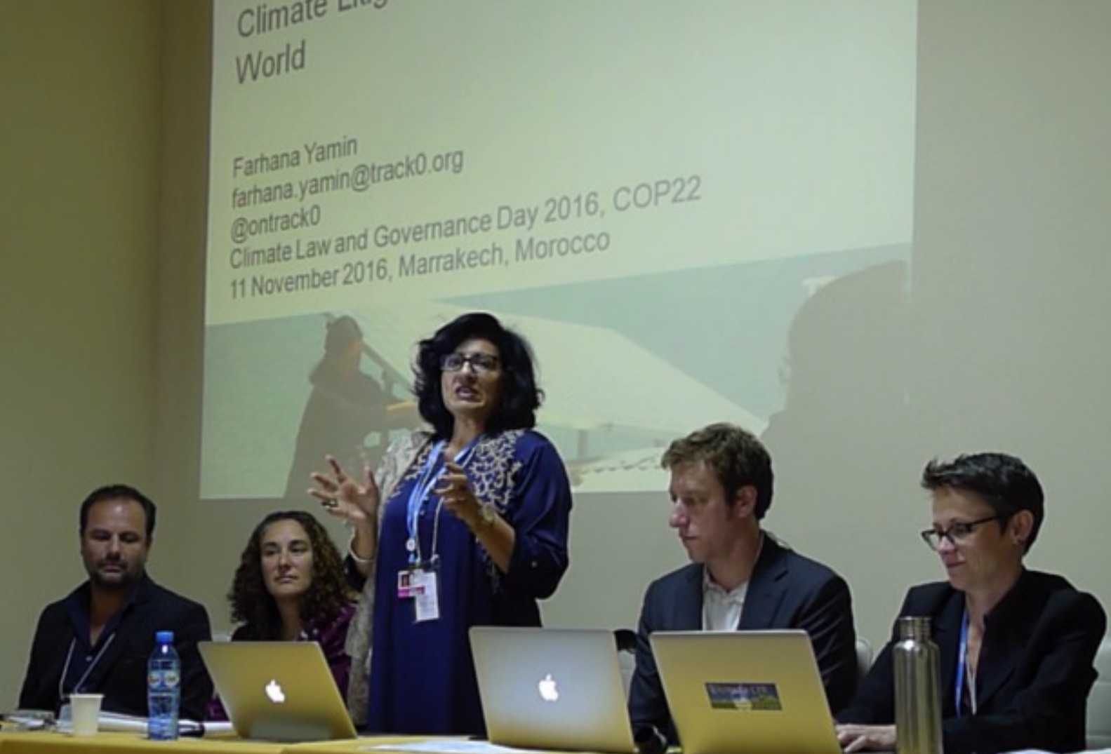 Expert Roundtable: Role of Climate Litigation in the Post-Paris World
