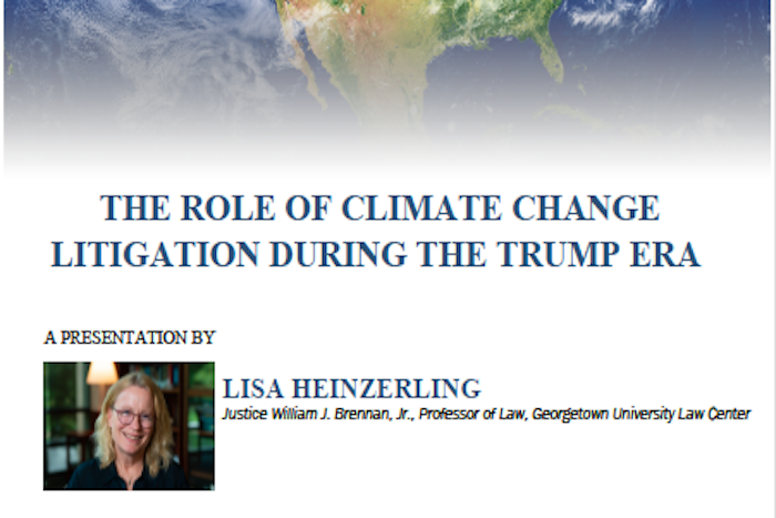 The Role of Climate Change Litigation During the Trump Era